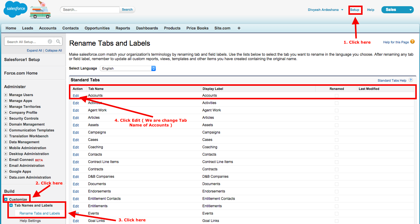 How to do Rename Tabs and Labels in Salesforce.com?